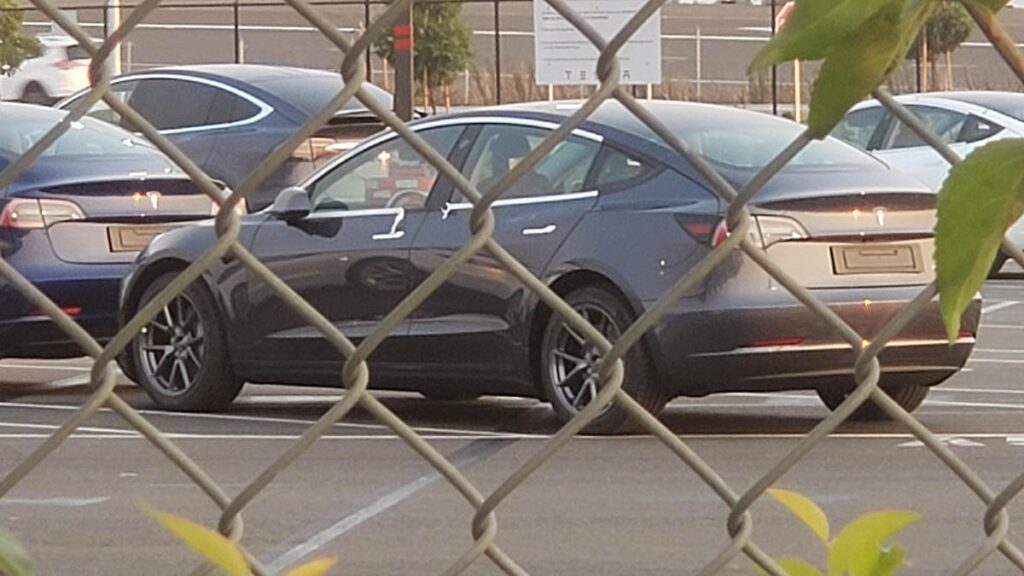 A refreshed 2021 Tesla Model 3 spotted at the Fremont factory.