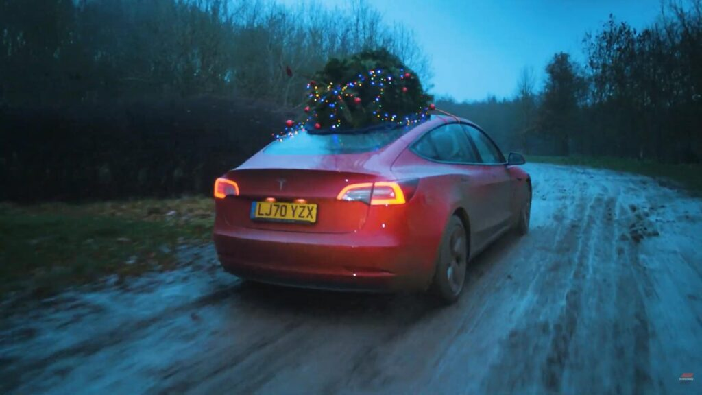 Tesla Model 3 carrying a Christmas Tree on top.