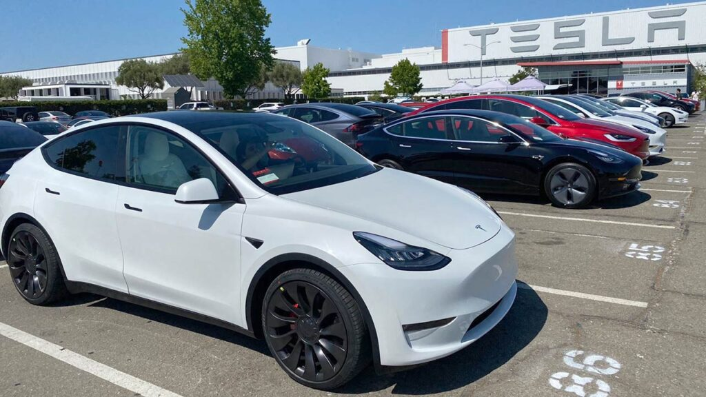 Tesla Model Y and other Tesla cars outside a Tesla Store and Service Center.
