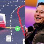 Elon Musk and FSD Beta.